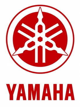 Yamaha Competition Motorcycle Valves