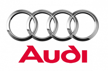 Audi Competition Plus Engine Valves