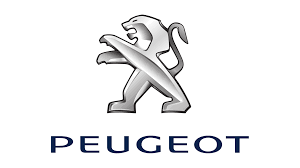 Peugeot 6000 Series Competition Valves